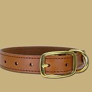 Dog Collar Handmade in Ireland Leather and Brass