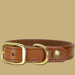 Dog Collar Handmade in Ireland Leather and Brass